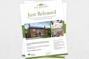 New Homes Release Flyer